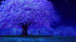 DCIII-tree