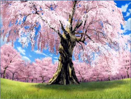 Everlasting tree