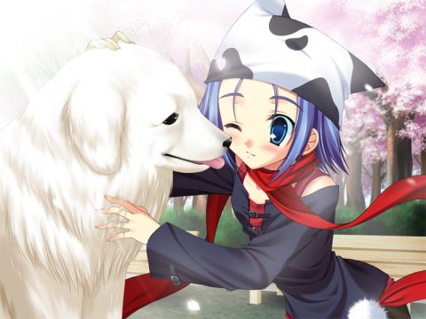 Minatsu dog